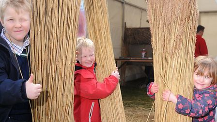 Max (L to R) and Miles Nicholls along with Layla Pimble gather reeds at the Spring Fling. Photograph