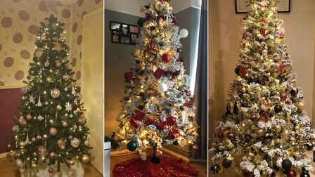 Christmas trees put up by readers Claire Rowe, Tuesday Butcher and Carlie Fisher