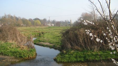 The rolling green fields around Shotesham - seen here from Hawes Green - is one Norfolk's walking wo