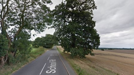 The oak tree off School Road in Elmswell which Mid Suffolk District Council's planning committee sou