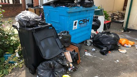 Rotting waste was found at the properties in Hayes Road Clacton. Picture: TENDRING DISTRICT COUNCIL
