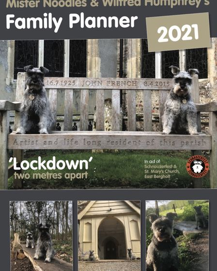 Mr Noodles and his best friend Wilfred are the stars of a new lockdown calendar. Picture: GRAHAM REED