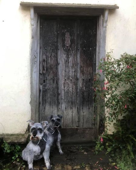 Mr Noodles and his best friend Wilfred at door number eight - probably one of their most famous and oldest doors, at...