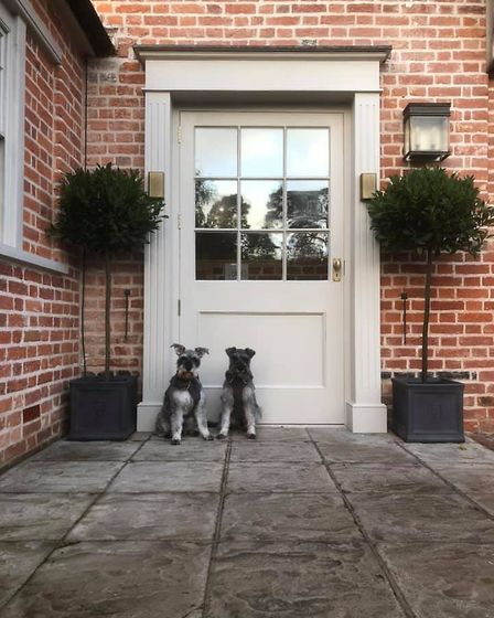 Mr Noodles and his best friend Wilfred at door number seven- the recently reopened The Lion Brasserie. Garage. Picture...