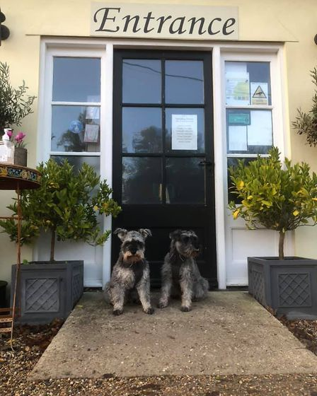 At Your Door - is the new lockdown campaign by Mr Noodles and his best friend Wilfred. Picture: GRAHAM REED