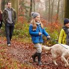 Suffolk has a number of spots that are perfect for you and your family to take the dog out on a walk