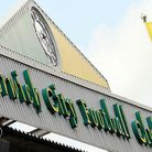 The Yellow Army is heading to Fulham today for a crunch game in Norwich City's bid to stave off rele
