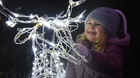Edie Sturman, three, meets one of the reindeers at Peter Beales Garden Centre's Christmas lights. Pi
