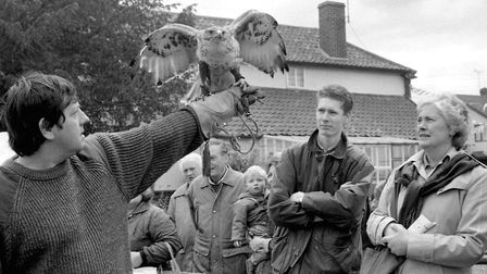 A birds of prey display at Mendlesham Street Fair in May 1991 Picture: ARCHANT