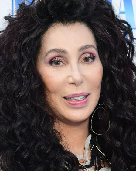 Pop queen Cher made the news this week after announcing she would be flying across the world to help a lonely animal.