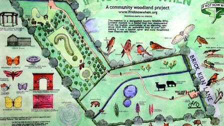 The 'if not now, when community woodland' in Suffield. PHOTO: ANTONY KELLY