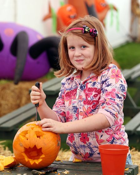 Skylark Maize Maze and Funyard near Wimblington will stage a series of events this Halloween. Picture: Supplied