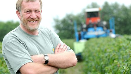 EDP2 food champion farmer Robert Salmon (pictured) grows 42 acres of blackcurrants at Hyde Hall, Fra