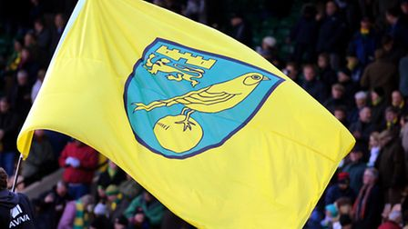 These are bleak times to be a Norwich City fan, but there are reasons to be cheerful. Sort of.