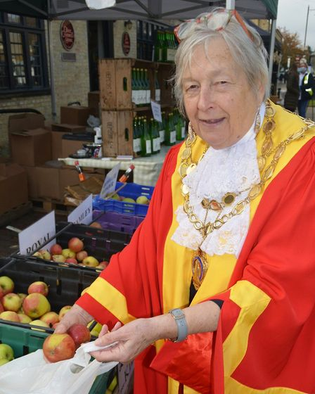 Mayor of Ely, Cllr Sue Austen, and her consort Cllr Arnie Arnold oversaw a range of apples while taking part in the...