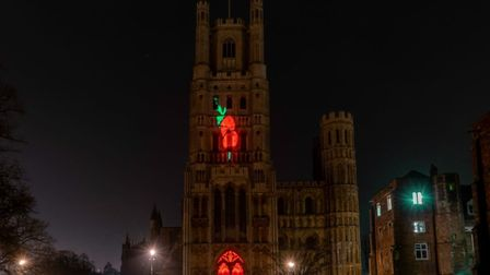 Illustrator Andrew Sharpe's red and green poppy was projected on to the front of Ely Cathedral's West Tower to mark...