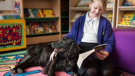 Caitlin Goldsmith reading with Sebastian at Queen's Hill primary school at Costessey. Photo: Bill Sm