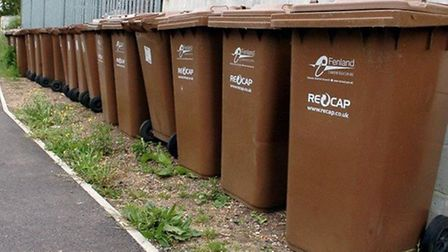 Fenland District Council is encouraging residents to sign up to their garden waste 'brown bin' service, which starts in...