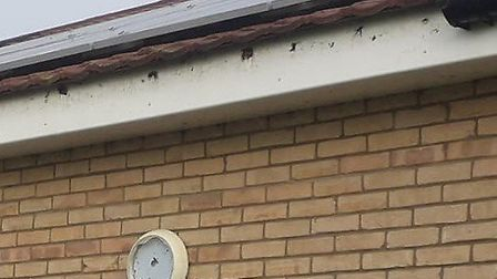 A light was damaged, letters were ripped off and guttering was removed by vandals during a spate of incidents at...