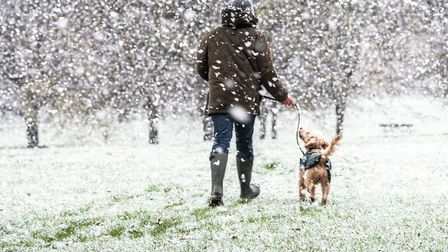 Craig Robinson and Dudley enjoying the snow in Christchurch Park, Ipswich Picture: SARAH LUCY BROWN