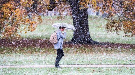 A member of the public walks through the snow flurry in Christchurch Park Picture: SARAH LUCY BROWN