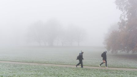 A foggy morning in Christchurch Park, Ipswich. Picture: SARAH LUCYBROWN