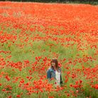 Jean Skipper admires the field of poppies growing beside her house at Trowse near Norwich. Photo: Bi
