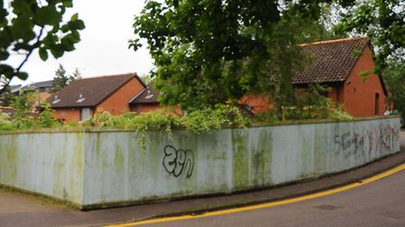 The overgrown, boarded up and fenced off houses in Argyle Street. Picture: Denise Bradley