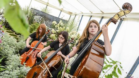 Scenes from Sandringham Flower Show 2014 - The EDP sponsored show garden with Sistema Norwich supply