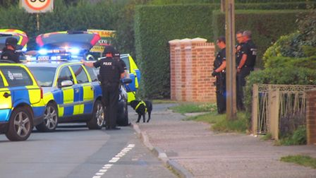 Police sniffer dogs following armed incident at Ormesby St Michael. PIC: Joe Aldred.