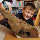 Shae Williams, 9, with the latest addition to his Nelson's Museum in his bedroom at Costessey, an ac