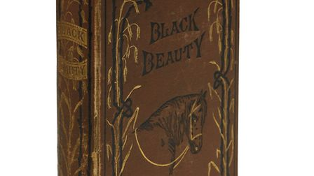 A rare first edition of Anna Sewell's Black Beauty is coming up for auction