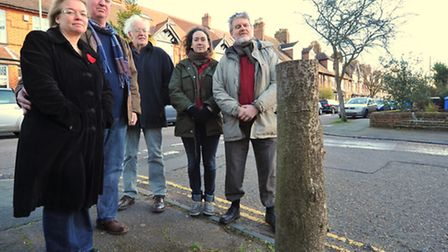 Green councillors and residents who raised concerns that trees being chopped down were not being rep