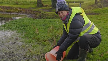 Carole Davidson, volunteer coordinater, from the West Runton toad patrol. Picture: Danielle Booden