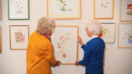 Iceni Botanical Group are holding an art exhibition at Hockwold hall this weekend.