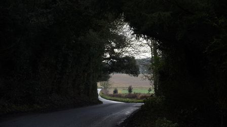 A road runs through a tunnel of trees at Great Ashfield in Suffolk