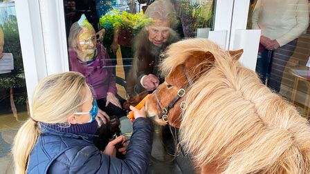 Resident 100-year-old Yvonne Davidson meets shetland pony Jack Brock and his owner, Ali Champion, th