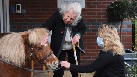 Yvonne Davidson, aged 100, meets Shetland pony Jack Brock, during his visit to Windmill House Care H
