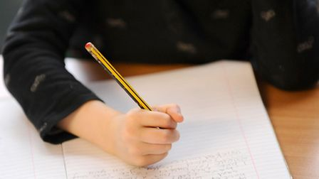 More Norfolk 11-year-olds achieved the expected grade - but not as many as forecast