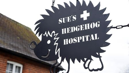 Sue's Hedgehog hospital is looking for a bigger site