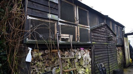 Sue's Hedgehog hospital is looking for a bigger site Picture: CHARLOTTE