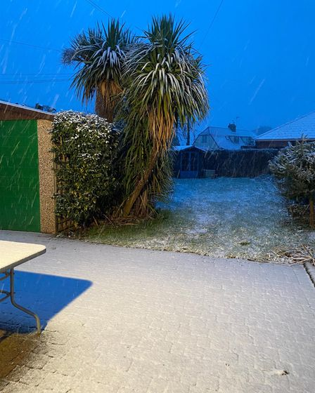 Snow in a garden in Thorpe St Andrew.