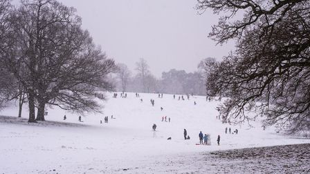 Families headed to the slopes in Christchurch Park to do some sledging.