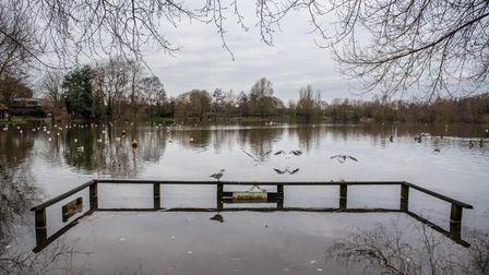 Flooding of the picnic area at Needham Lake this week.