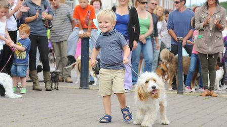 A scene from last year's It's a Dog's Life, which enjoyed warm weather. Picture: James Bass