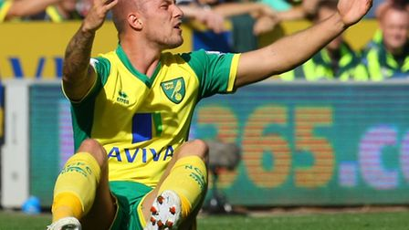 Anthony Pilkington of Norwich appeals to Referee Neil Swarbrick during a Barclays Premier League ma