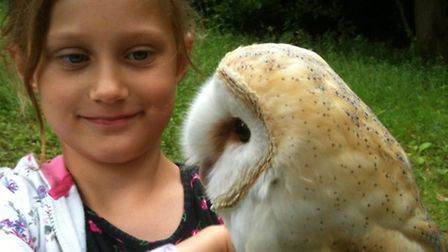 Fears are growing for Whisper the barn owl after he unexpectedly flew off during a display. He is pi