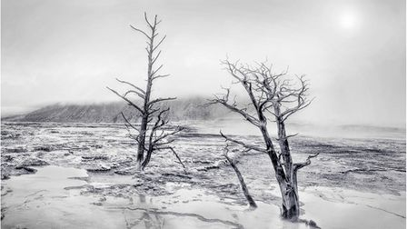 A Harsh Winter by Diana Knight