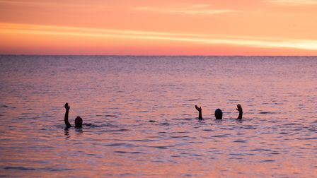 Tony Pick and Rob Mabey on their morning swim. Picture: SARAH LUCY BROWN