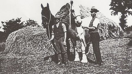 George Bullett with a horse called Dodman and Sid Bullett with Smart at Hall Lane.
